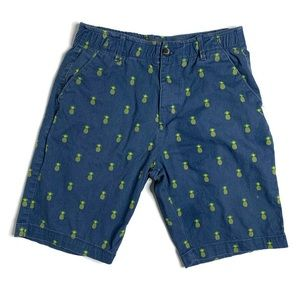 Plugg Flex Blue And Yellow Pineapple Shorts